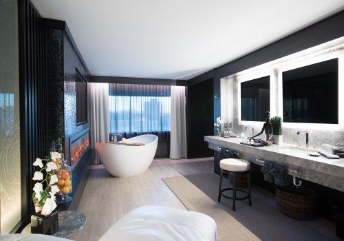 Spa_Suite_Bathroom_v2_small